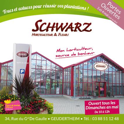brochure_SCHWARZ_IMPRESSION_controle