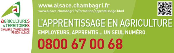 apprentissage-chambre-agriculture