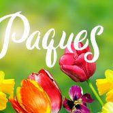 Fêtez Pâques chez votre horticulteur