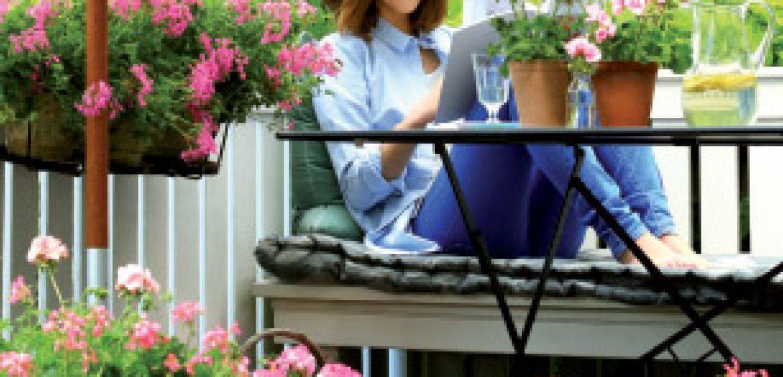 fleurs et plantes d 39 alsace actus. Black Bedroom Furniture Sets. Home Design Ideas