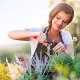 Des idées pour votre jardin d'été