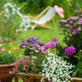 Retrouvez votre jardin en pleine forme au retour des congés !