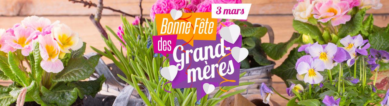 Fleurs Et Plantes D Alsace Ne Ratez Pas La Fete Des Grand Meres