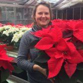 Vu dans la presse : Le poinsettia, la star des fleurs de Noël en Alsace